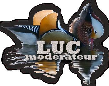 aquacoincland Luc_si10