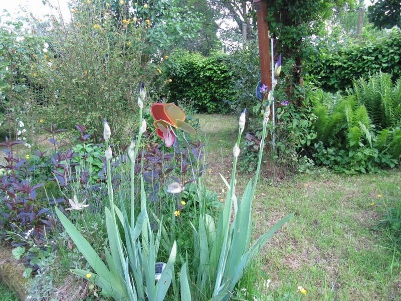 en vrac les floraisons du jardin  00218