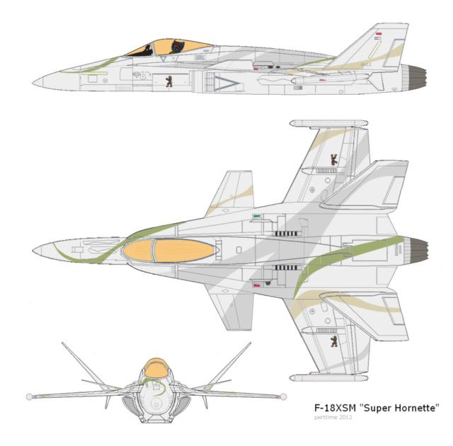 CHALLENGE FA-18 F_18xs10