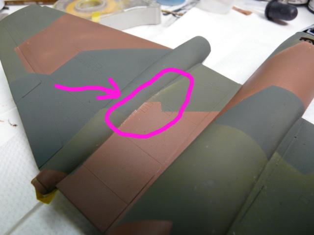 Opinion des spécialistes de couleurs: What-If Canberra  1/72 P1010415