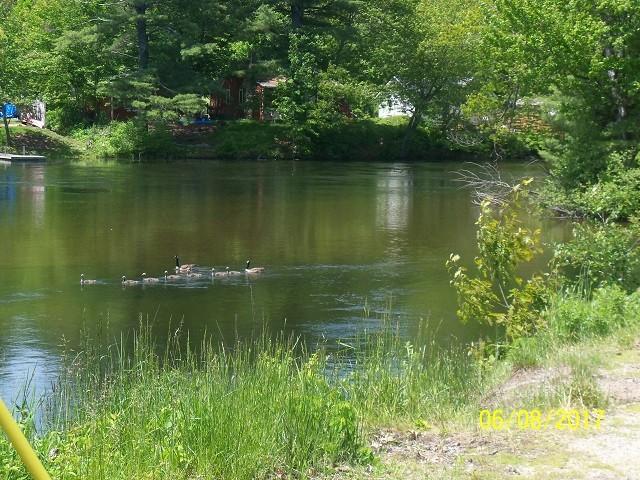New England June 2017 06-08-10