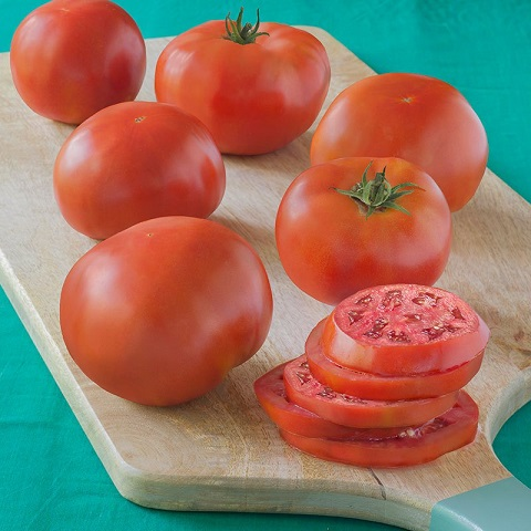 New England June 2017 Tomato10