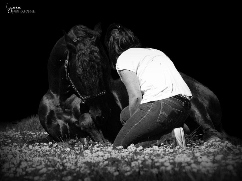 c'est le printemps !! immortaliser votre cheval pour de beaux souvenirs ! contactez moi :)  Dsc_0511