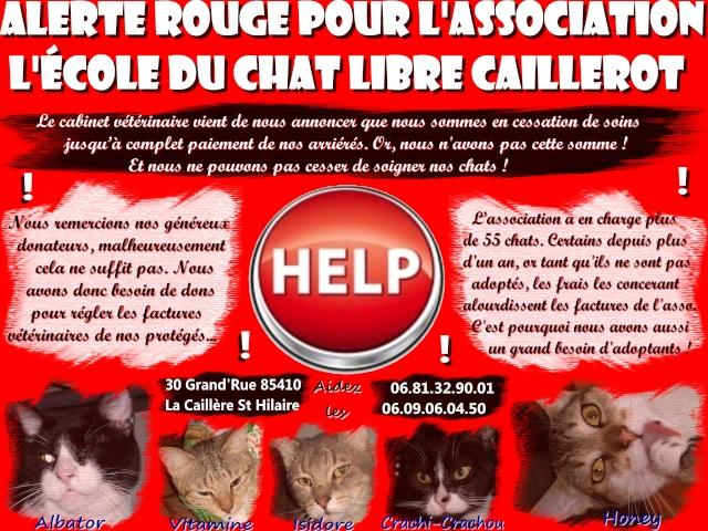 Appel à l'aide, gros SOS pour l'asso!!! Affich10