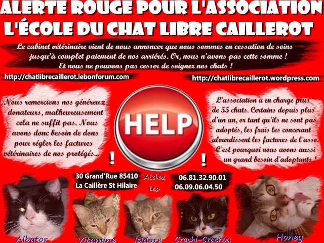 Appel à l'aide, gros SOS pour l'asso!!! Affich11