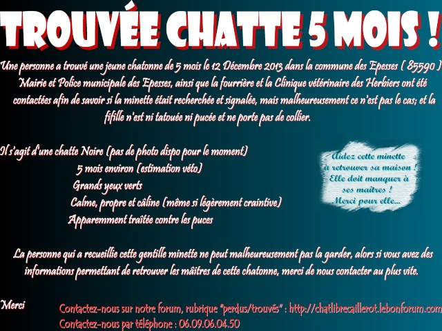 TROUVEE MINETTE NOIRE 5 MOIS - Les Epesses (85590) Affich12