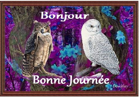 images et textes Bonne_15