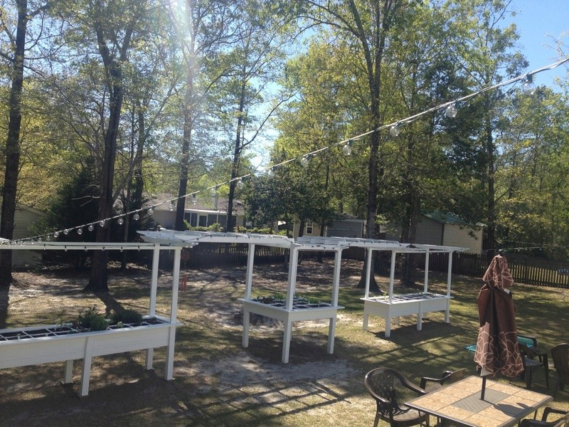 Hobby Greenhouse Tour - Wilmington, NC 2016-010