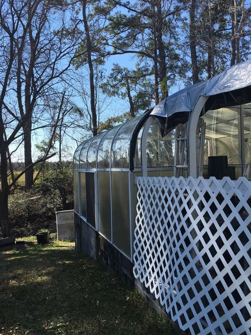 Hobby Greenhouse Tour - Wilmington, NC 2017-035