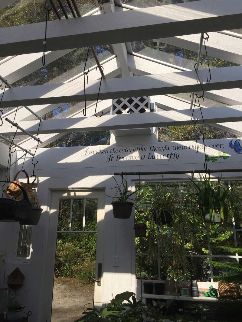 Hobby Greenhouse Tour - Wilmington, NC 2017-111