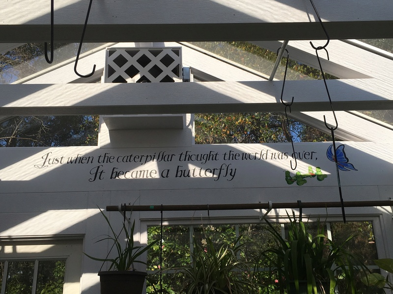 Hobby Greenhouse Tour - Wilmington, NC 2017-115