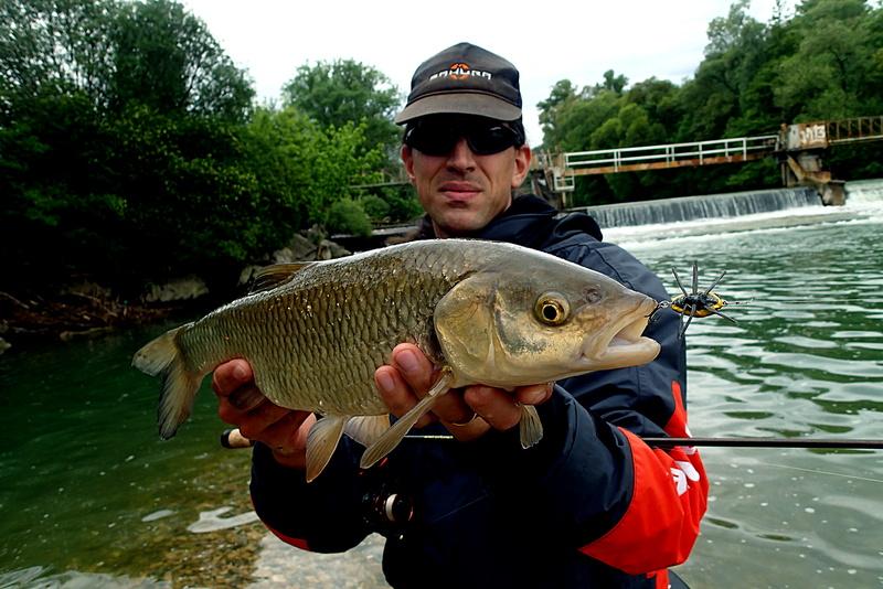 Sorties pêche Mai  Chubno10