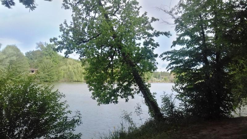 Le lac - Page 4 20170517
