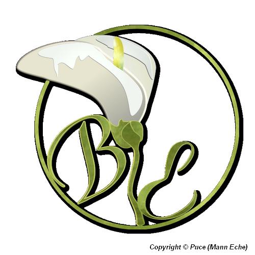 Galerie Puce ! Logo_f10