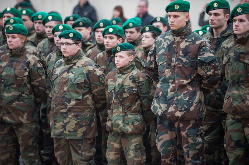 Lithuanian military and paramilitary berets S110