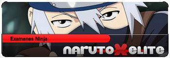 Examenes ninja