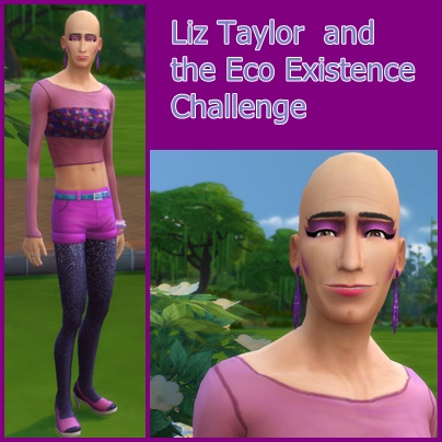 Liz Taylor and the Eco Existence Challenge  Ecoexi10