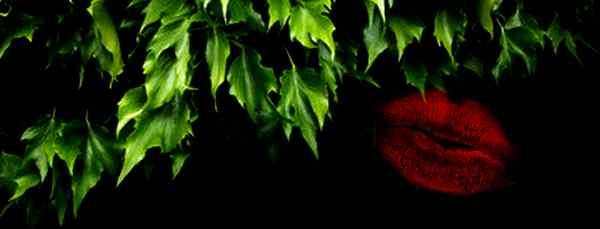 Le Bal des Homards [PV Joker-Poison Ivy] Poison12