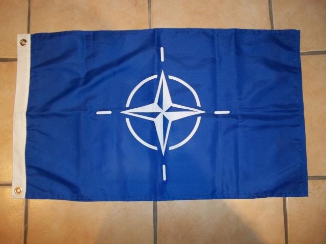Fanion de l'OTAN 100_3426