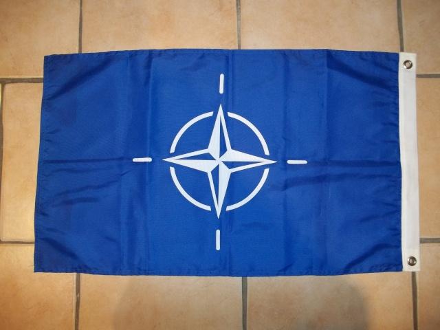 Fanion de l'OTAN 100_3427