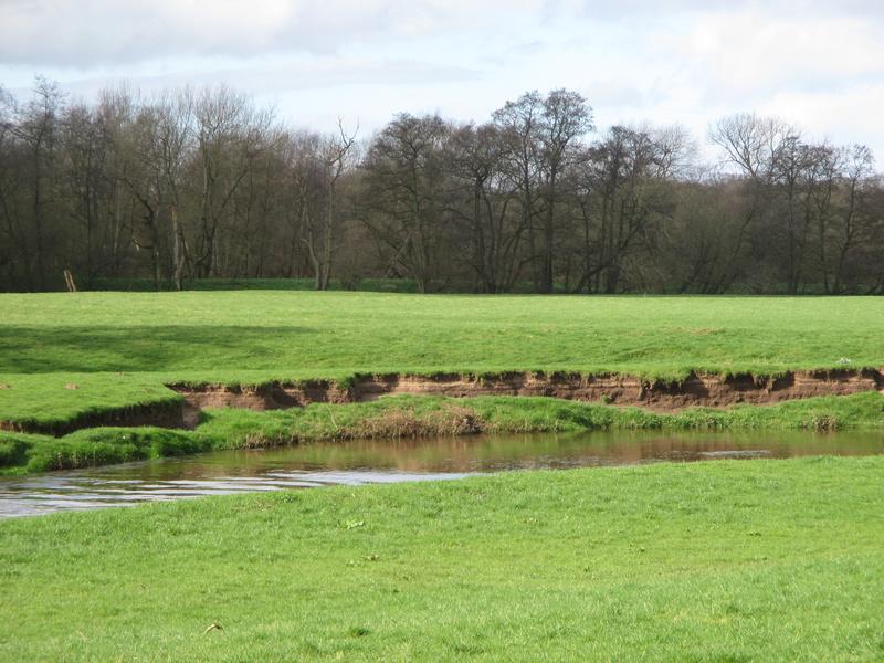 Brereton & Swettenham, Cheshire Img_1029