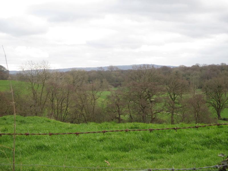 Brereton & Swettenham, Cheshire Img_1032