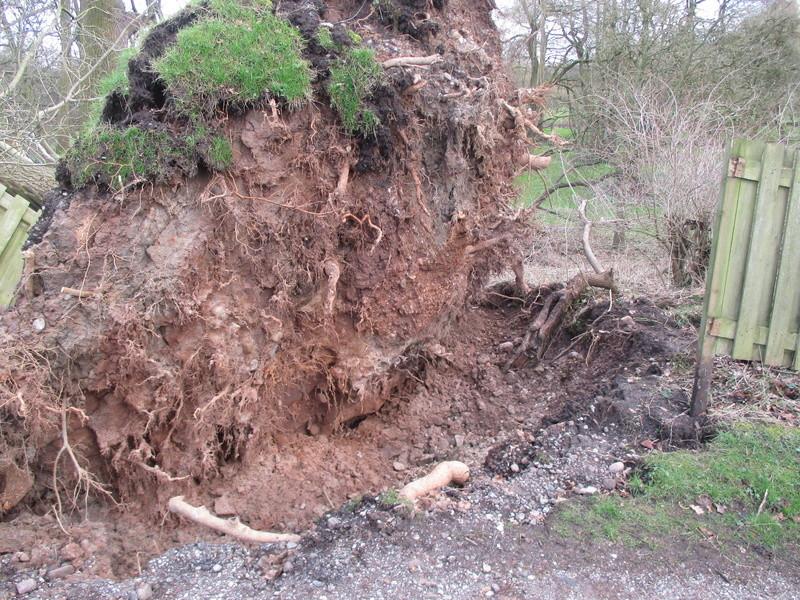 Brereton & Swettenham, Cheshire Img_1034