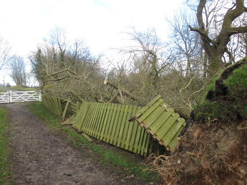 Brereton & Swettenham, Cheshire Img_1035