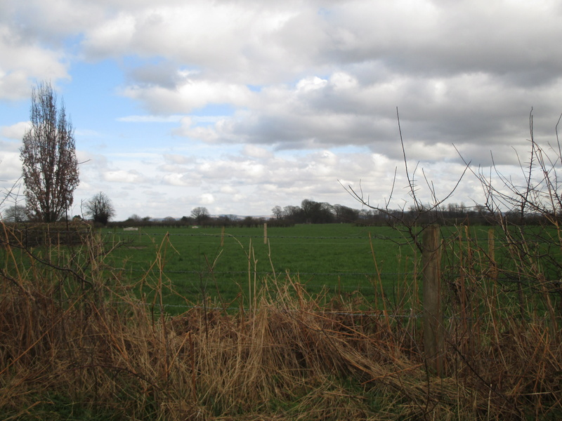 Brereton & Swettenham, Cheshire Img_1111