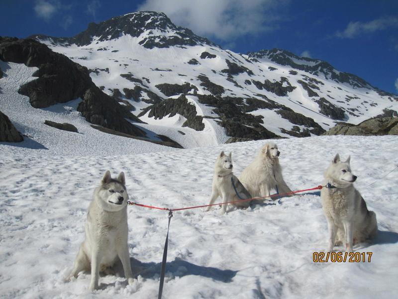 Saskia, Jiro, et leurs copains 129