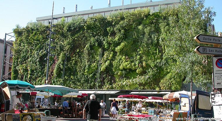 Le jardin vertical. Créer un mur végétal. Mur-ve10
