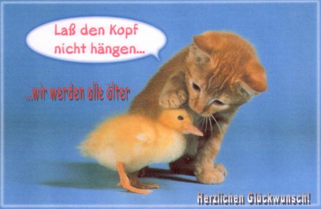 Happy Birthday, liebe Ute! Katzek10