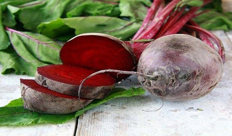 This Plant Returned My Vision, Removed Fat From My Liver And Completely Cleansed My Colon Beet_r10