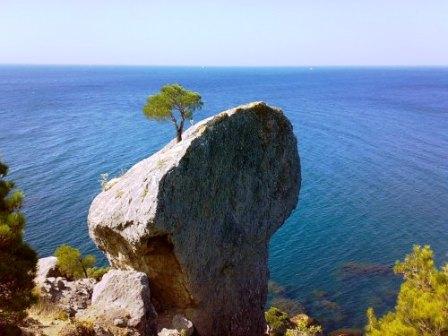 Обучение рейки в Крыму. Все ступени - Страница 2 Ea1110