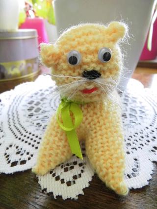 un petit chat Dsci2339
