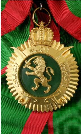 Unités, Grades et insignes dans les FAR / Moroccan Units and Ranks - Page 5 Cvb710
