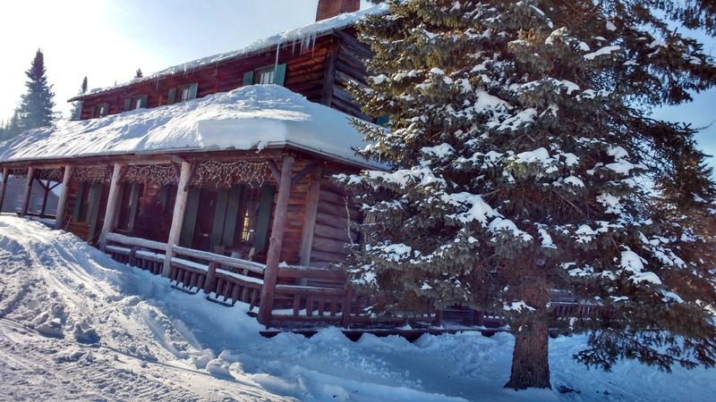 Quelques photos d'hiver! Img_2011