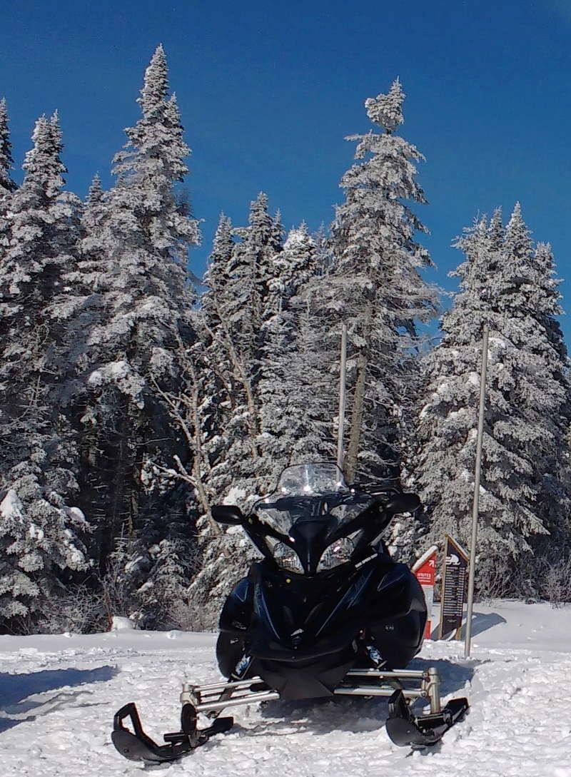 Quelques photos d'hiver! Img_2014