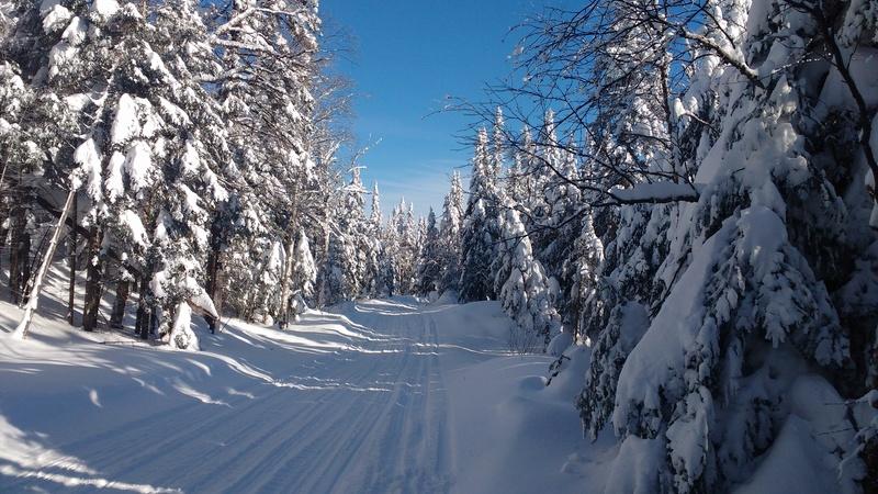 Quelques photos d'hiver! Img_2015