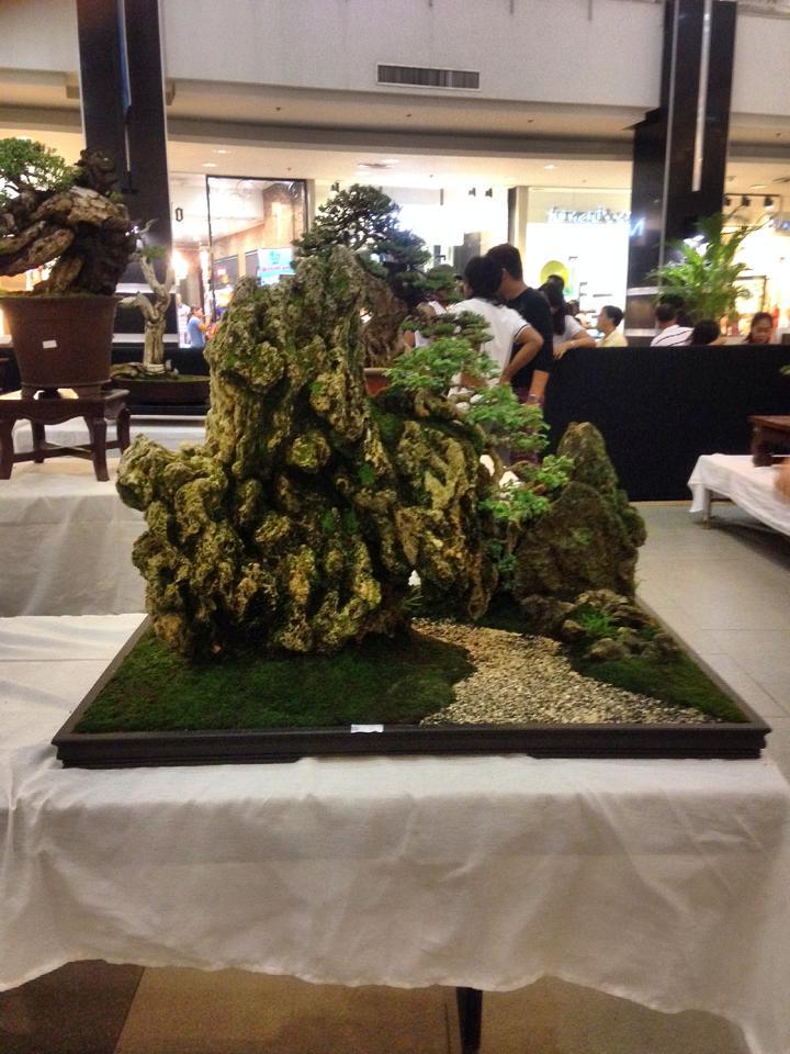KHBS bonsai 10th show 13773110