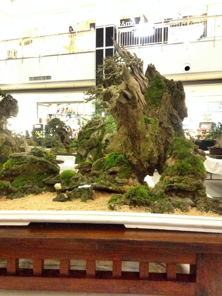 KHBS bonsai 10th show 13799210