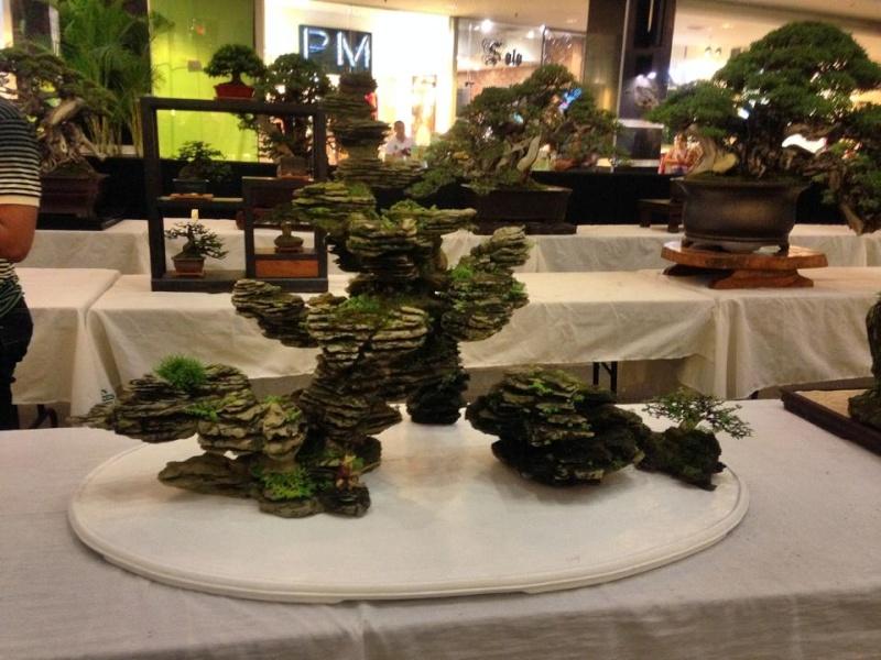 KHBS bonsai 10th show 13803410