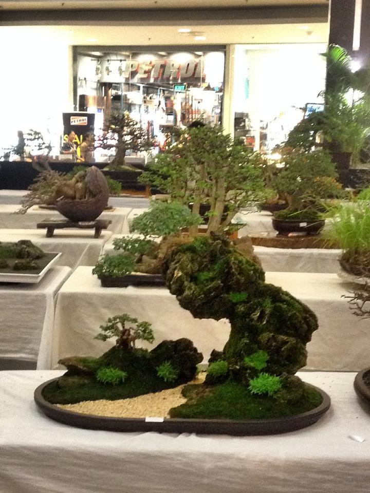 KHBS bonsai 10th show 13811910