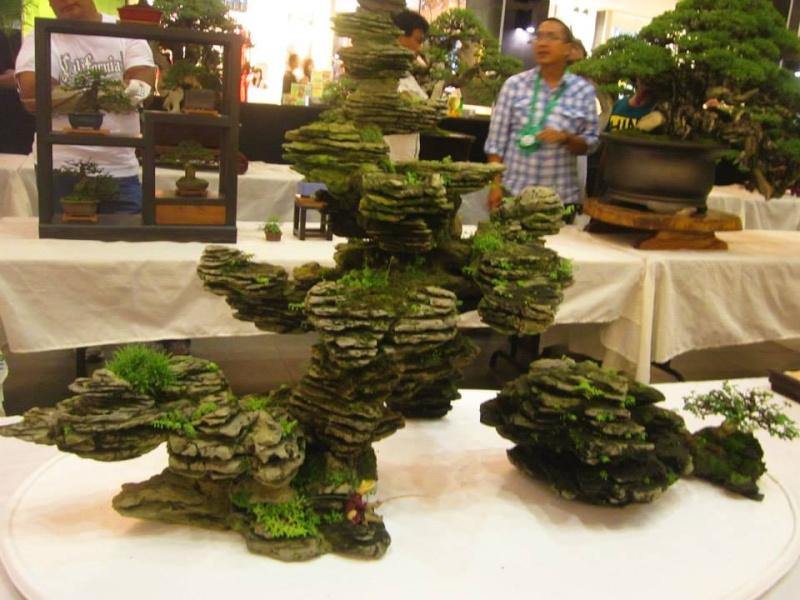 KHBS bonsai 10th show 13820210