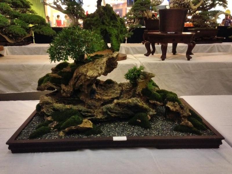 KHBS bonsai 10th show 13853310