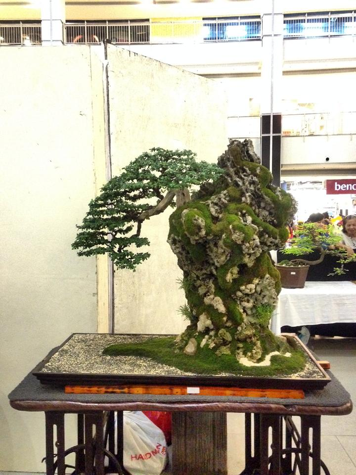 KHBS bonsai 10th show 13859910
