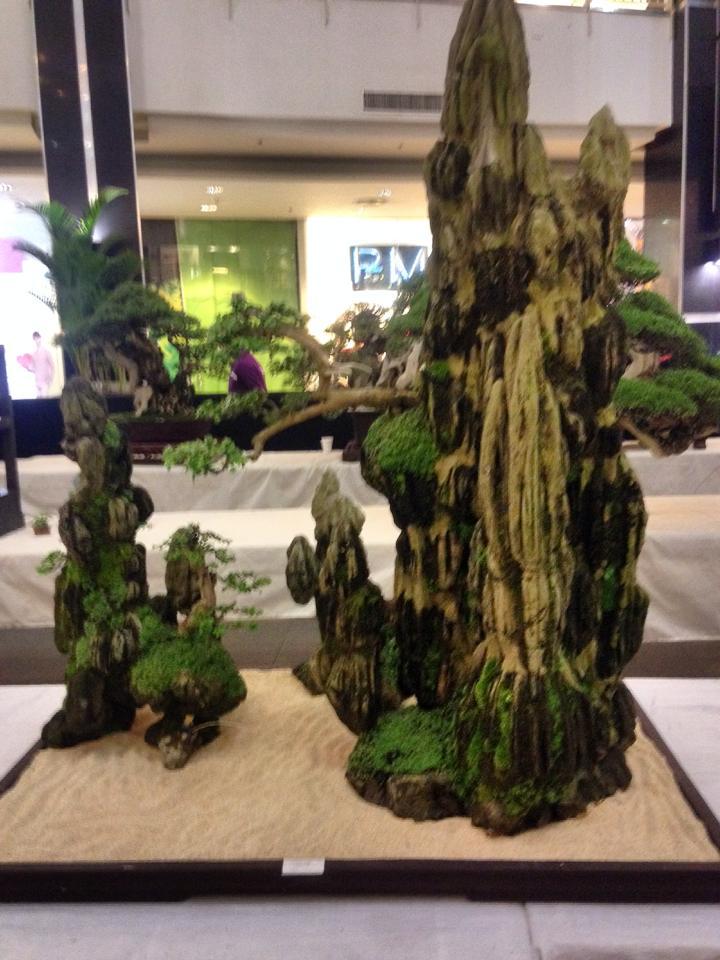KHBS bonsai 10th show 13960110