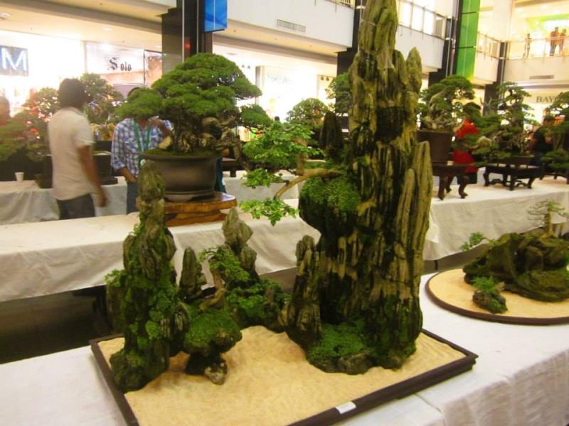 KHBS bonsai 10th show 28290510