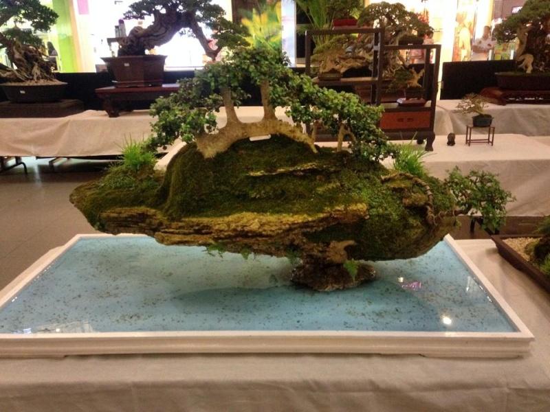 KHBS bonsai 10th show 99401710