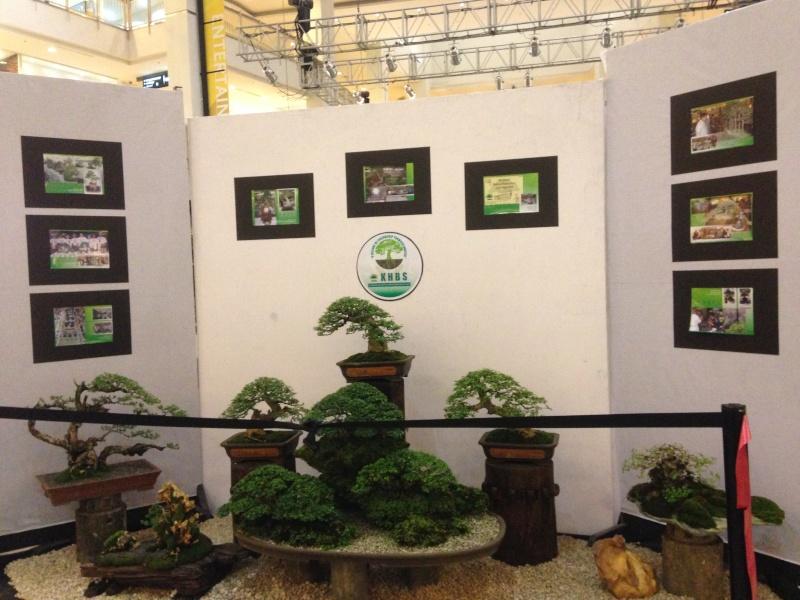 KHBS bonsai 10th show Img_0910